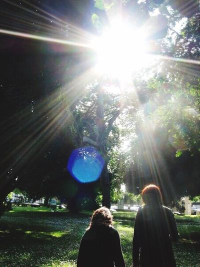 Lens Flare Sunbeam Sunlight Sun Real People Tree Leisure Activity Lifestyles Standing Nature Solar Flare Outdoors Women Beauty In Nature Young Women Sunrays Grass Day EyeEm Nature Lover Eye4photography  EyeEm