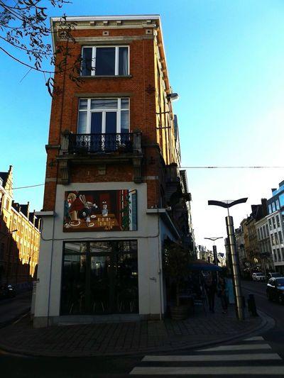 Streetphotography Architecture Ghent Gand Cafe Shop Blue Sky Winter Sun Trees And Sky Shadows & Lights Den Hoek Af