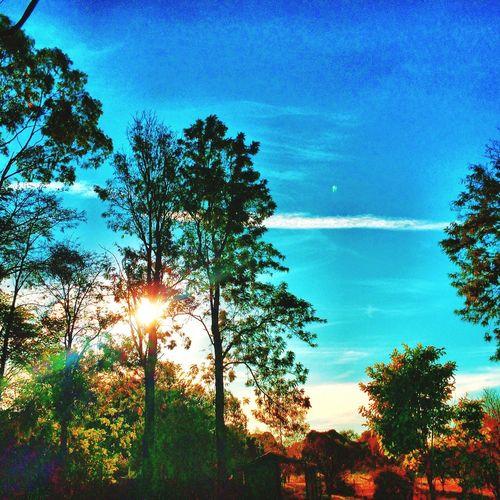 Sitio AVARE SP BRASIL ☀️ 🐎 🇧🇷 Landscape_Collection EyeEm Gallery Sunset #sun #clouds #skylovers #sky #nature #beautifulinnature #naturalbeauty #photography #landscape Sunrise_sunsets_aroundworld All_shots #Portrait #Vscocamphotos #Likesforlikes #Photographs #Photographylovers #TopLikeTags #Outdoorphotography #Likesreturned #Silhouette #Likeforlike #Art #Contrast #Landscaped #TagStaGram #love #friends #tagstagram #photooftheday #selfie #amazing #f Hdr_Collection The Moment - 2015 EyeEm Awards Landscape_photography EyeEm Tasteofnature #awesome #best #cool #stephiscool #top #topnewfollowers #fantastico #instagram #sound #soundhound #applemusic #digital #model #beautiful #photos #photography #amazing #usa #socialmedia #social #nature #street #streetart #instagram #video #vi