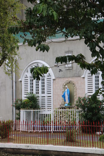 Architecture Brickdam Cathedral, Guyana, Statue Tree Building Exterior Catholic Church Holy Mary Outdoors Wrought Iron Design
