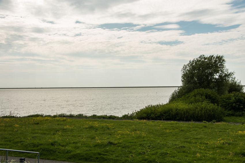 City Coast Deich  Holland Nature Netherlands No People Zealand