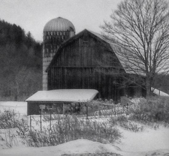 Barn Tour '15 Countryside The Places I've Been Today Barn Drivebyphotography Country Life Blackandwhite EyeEm Best Shots