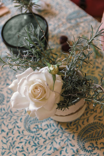 Plant Flower Flowering Plant Nature Beauty In Nature Freshness Rosé Rose - Flower High Angle View Close-up Vulnerability  Table Fragility Indoors  Decoration Flower Arrangement Bouquet Flower Head Petal No People Floral Pattern Bunch Of Flowers
