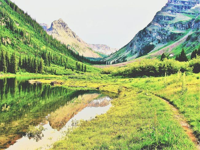 Reflection Tree Green Color Nature Landscape Growth Water Mountain Outdoors Overcast Skies Clear Water Coloradophotographer Maroonbells