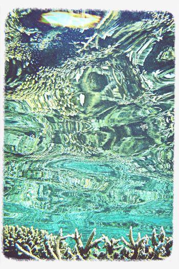 Underwater Water Reflections