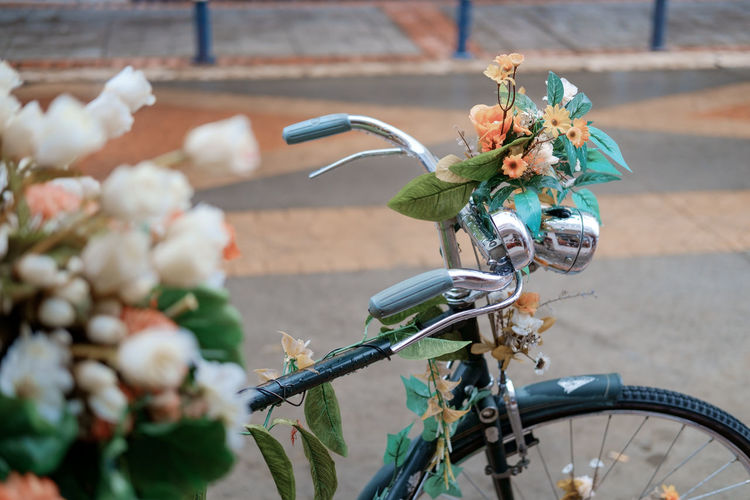 An old bike decorated with flowers in Cotacachi, Ecuador. Raindrops Basket Bicycle Bicycle Basket Bouquet Close-up Day Decorated Flower Flower Head Flowering Plant Focus On Foreground Fragility Freshness Handlebar Land Vehicle Mode Of Transportation Nature No People Outdoors Plant Stationary Street Transportation Vulnerability  The Still Life Photographer - 2018 EyeEm Awards