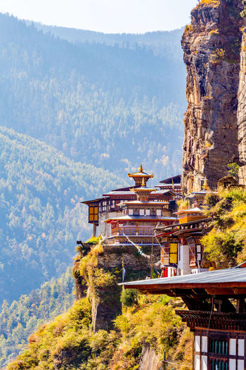 ASIA Buddhist Clear Sky Nature Wood Bhutan Buddhism Buddhist Temple Cliff Day Forest Outdoors Rock - Object Temple Traditional Valley
