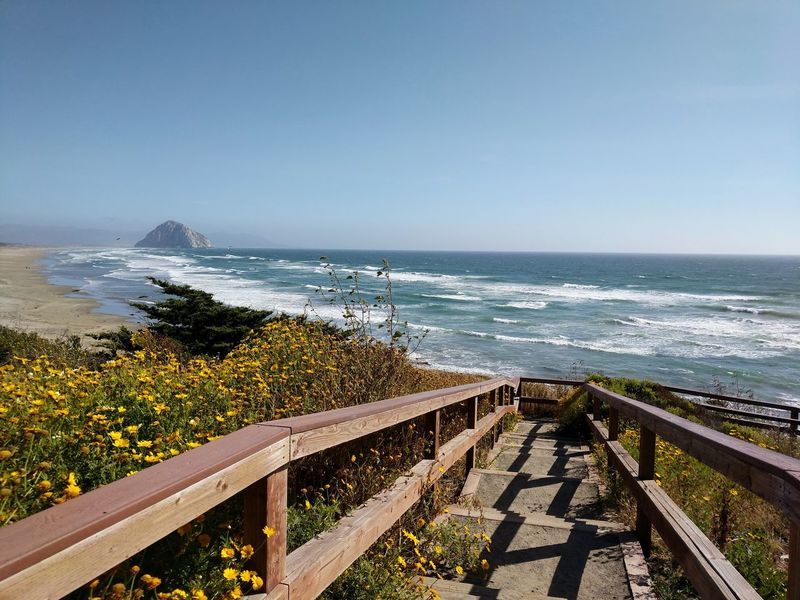Sea Horizon Over Water Beach Water Scenics Sunny Outdoors Day Railing Nature Beauty In Nature Tranquility Sunlight Vacations No People Tranquil Scene Travel Destinations Sky Clear Sky Wave Rock Morro Bay California Pacific Ocean