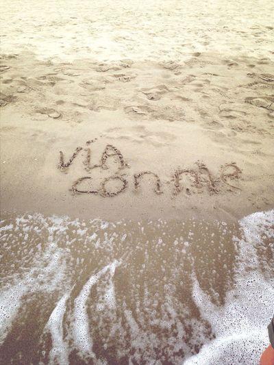 Vieniviaconme Viaconme Spiaggia Mare