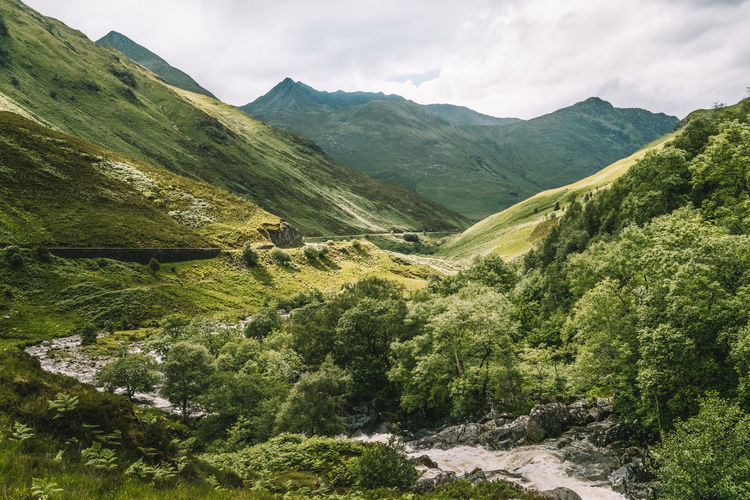 Beauty In Nature Day Glen Shiel Green Color Landscape Mountain Mountain Range Nature No People Outdoors Scenics Scotland Scotland Highlands Sky Tranquil Scene Tranquility Tree