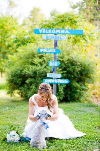 The Bride Weddingdress Wedding Day Bride Wedding Photography Romantic