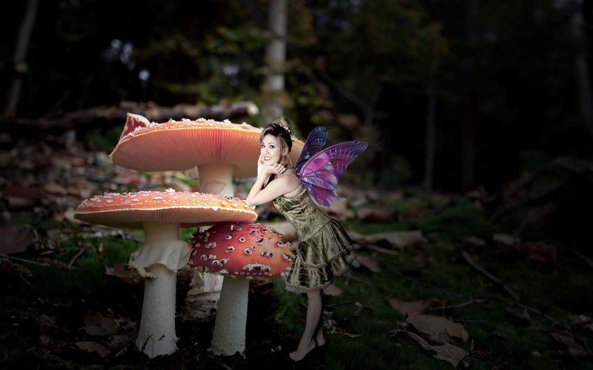 Fairy Fantasy Edits Imagination THINKERbell