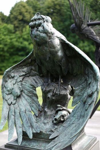 Bird Sculpture Statue Stationary ArtWork Art Artistic Artphotography Middelheim Park Stone - Object Stone Animal Bird Sculpture