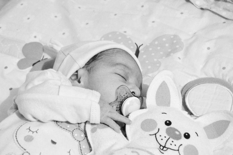 Baby Babyhood Indoors  Pacifier Innocence Childhood Bed Newborn Crib Sleeping Day Child Detroit Girl Babysleeping Children Blackandwhite