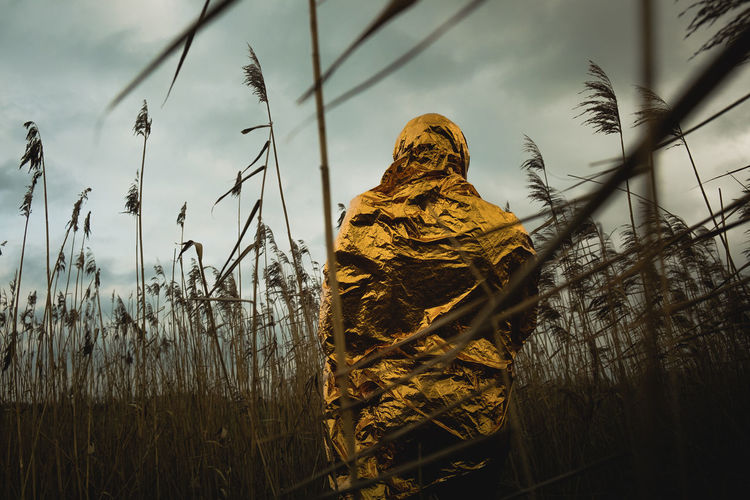 Cloudy Cloudy sky Hiking The Week on EyeEm Sculture Golden Cloudy Cloudy Sky Hiking Adventure Beauty In Nature Cold Day Grass Growth Moody Nature One Person Outdoors Plant Reed Sky Statue Tranquility