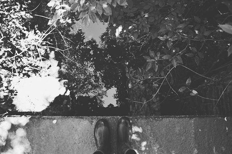 """""""El vértigo había desaparecido. Sentí una embriaguez especial, una sensación no malsana de poder, y de dicha. Subía hasta alturas increíbles y luego me dejaba caer, planeando suavemente, con las alas extendidas y aunque cerrara los ojos no corría riesgo de estrellarme, y me dejaba guiar en mi vuelo por impulsos arbitrarios y extraños, y sentía, que de algún modo, estaba trazando en el cielo un dibujo coherente y estético."""" Ig_cordoba Ig_argentina VSCO Igers Fly Jump Sky"""