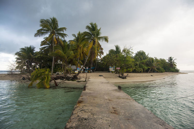 little island Beach Beauty In Nature Cloud - Sky Day Gosier Guadeloupe Island Nature Outdoors Palm Tree Sand Scenics Sea Sky Tranquility Tree Tropical Climate Vacations Water