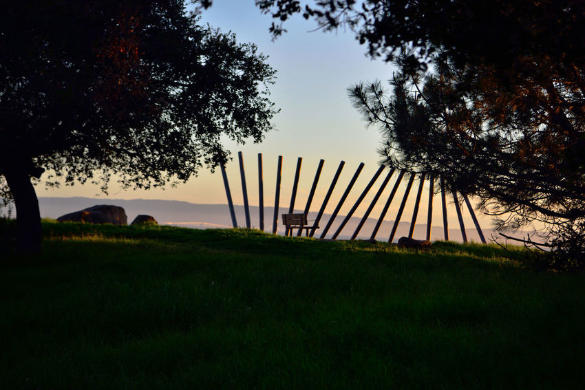 Sunset @ Oyster Bay Pt 2 San Leandro,Ca. Stainless Steel Sculpture Rising Wave 16 Poles Artist: Roger Berry All About Angles Landscape San Francisco Bay Hilltop Wooden Bench Trees Sunset Silhouettes Sunset Collection Scenic Landscape_Collection Landscape_photography San Mateo Bridge Marin Headlands Vista Rocks Grass Silhouettes Sunset