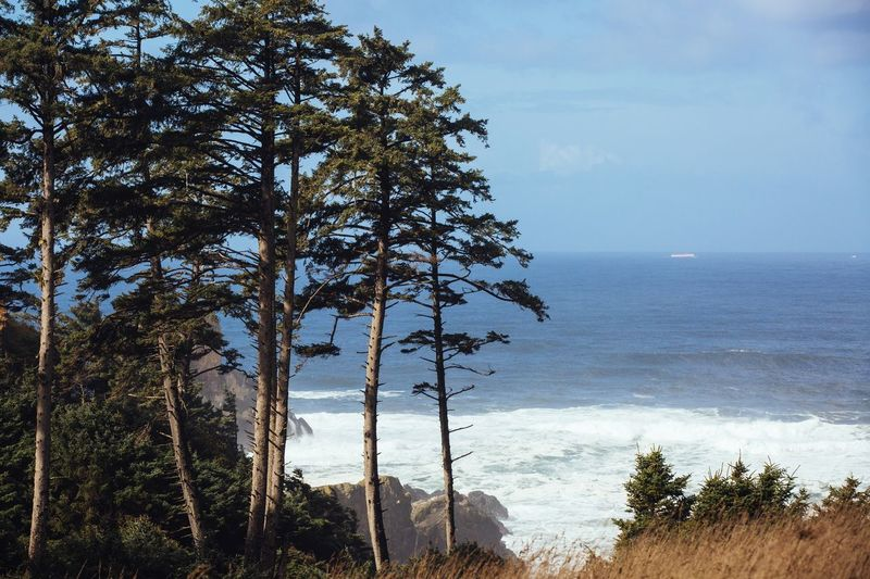 Ecola State