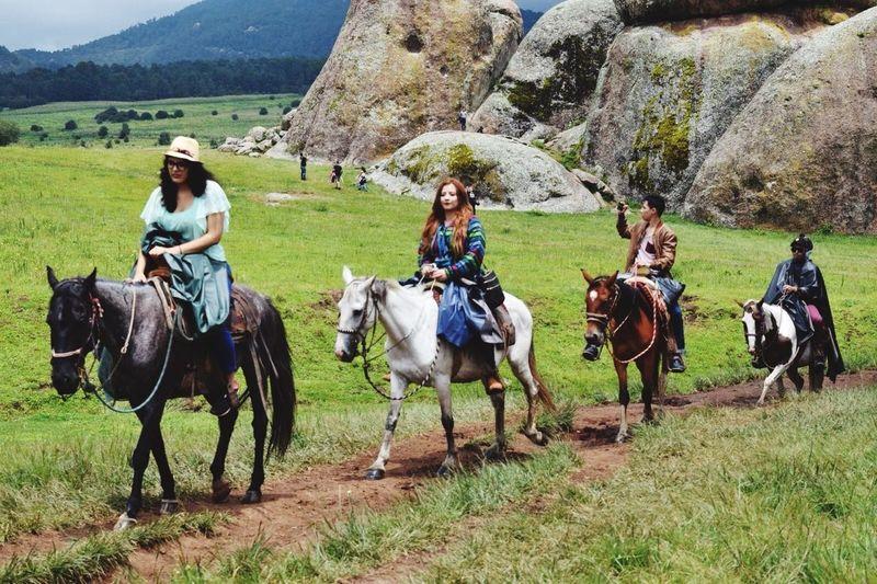 Horse Working Animal Mountain Tapalpa Tapalpa Jalisco Mexico Horseback Riding Tourism Nature