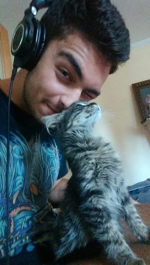this photo is sooo much xD Cat Catphotography Pet Petphotography Kitten Headphones Audiotechnica M50x Selfietime