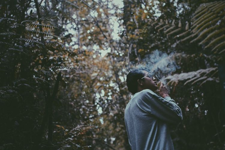 Low angel view of man smoking cigarette while standing against plants
