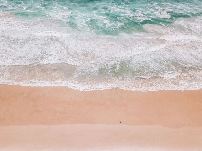 Land Day Nature Water Sand Beach No People High Angle View Outdoors Tranquility Landscape Environment Tranquil Scene Beauty In Nature Scenics - Nature Sea Backgrounds Non-urban Scene Animal Climate