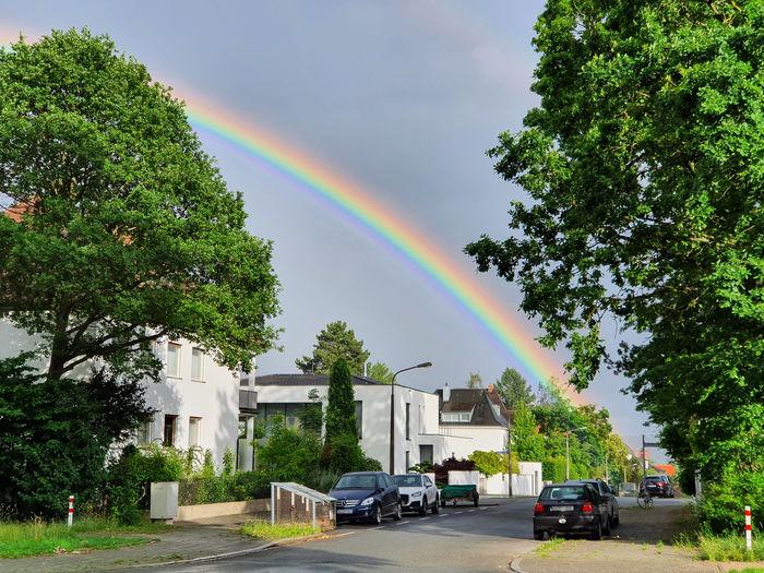 Rainbow over city against sky