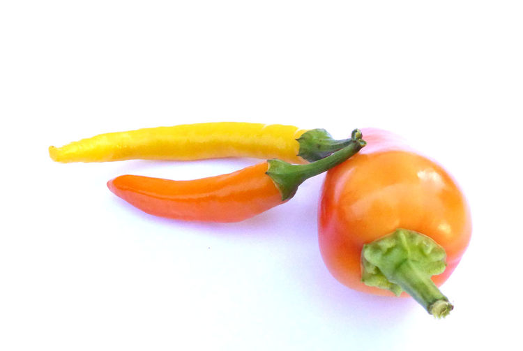 hot chili pepper Chili Pepper Close-up Food Food And Drink Freshness Growth No People Orange Color Paprika Pepper Red Vegetable Vegetarian Yellow