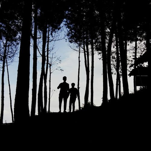 Silhouette of father and son standing in forest