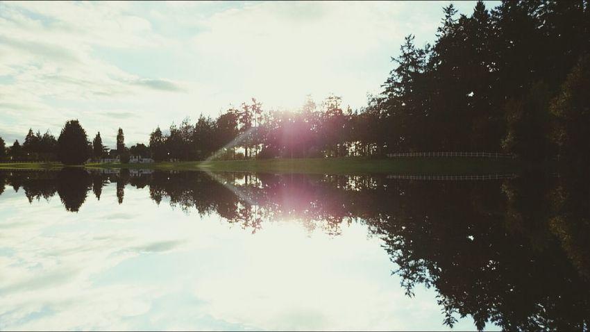 Reflets Trompe-l'œil Paysage