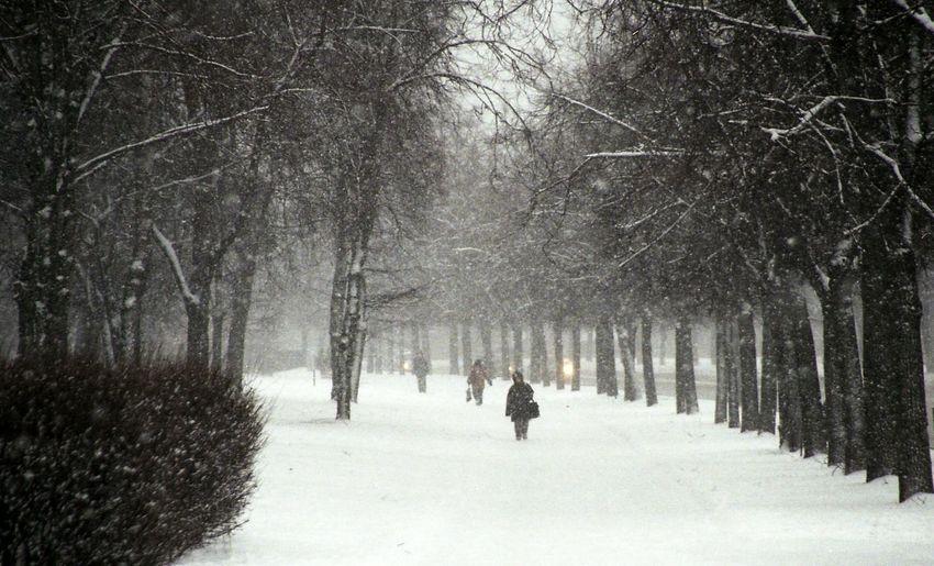 Best Weather Ever Vilnius Lithuania Snow Winter