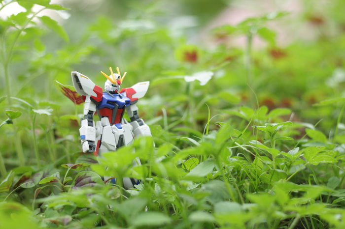 Find Grass Headwear Adventure Outdoors Child Boys People Day Plant Full Length Rural Scene Two People Childhood Adult Nature Gundam Gundam Build Fighter Gundamcollection Gundam Model EyeEmNewHere Toysphotography Toystory