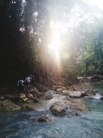 Be one with the nature, 2015 Nature Jungle River Mountains Friends Rocks Cebu Badian Kawasan Falls EyeEm Nature Lover