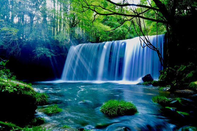 Forest Water Waterfall Scenics Tree Flowing Water Beauty In Nature Tranquil Scene Nature Flowing Idyllic Environment River Tranquility Majestic Stream Lush Foliage Green Color Vacations Day
