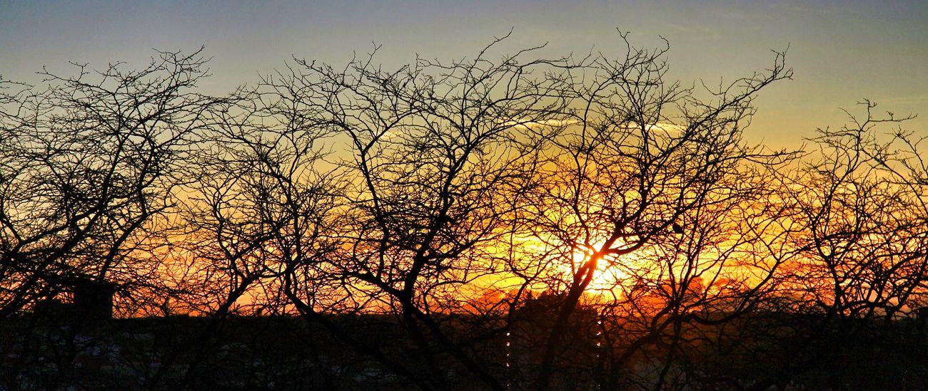 Madrid Sunset Atardecer Enjoying The Sun