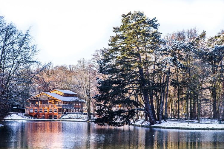 Beauty In Nature Boathouse Bois De La Cambre Chalet Robinson Cold Temperature Day Lake Nature No People Outdoors Scenics Silence Sky Snow Tourism Travel Destinations Tree Water Winter