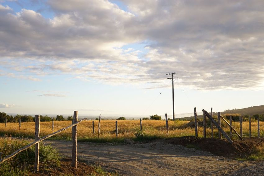 Golden times Fence Sky Field Cloud - Sky Landscape Outdoors Boundary Nature Rural Scene EyeEm Best Shots EyeEm Nature Lover Electricity  Tranquility No People Tranquil Scene Beauty In Nature Tree Eye4photography  Chile Sony A6000 Isla Chiloe Travel Vacations Relaxing Golden Hour