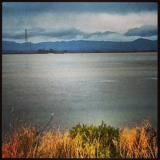 Clouds Water Wetland Vallejo egret crain brian guardianangel igerssac