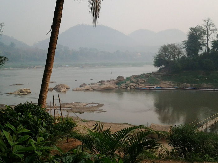 Laos Luang Prabang Mekong River Nam Khan River Riverside Riverbank Mountains And Sky Travelshots Travel Southeast Asia Peaceful Palm Trees Feel The Journey