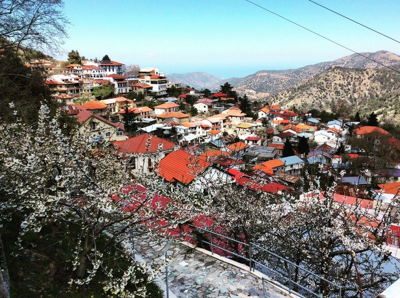 Cyprus Mountains Village View Mountainvillage Troodos Traveling Wanderlust Travel Photography Exploring Blossom Blossoming Tree Mountain Range Kakopetria