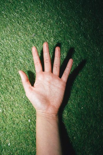 Cropped image of hand on grass