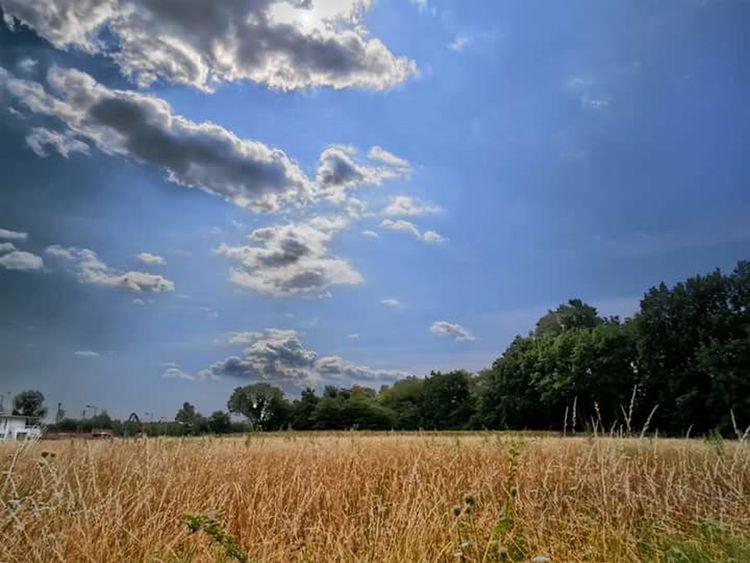Landscape Landscape_photography Lamdscapes Natura Nature Nature Photography Nature_collection Naturelovers Parma Italy Sky Sky And Clouds Clouds Skyline Skylovers Sky_collection Skyporn Clouds Collection Landscape_Collection View Campagna