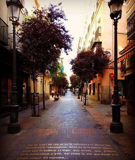 Detodounpoco Barrio De Las Letras