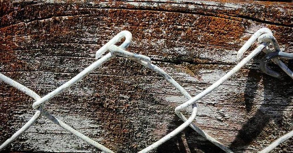 Fence Wire Wood Backyard Wmm_brown Tvc_chewy