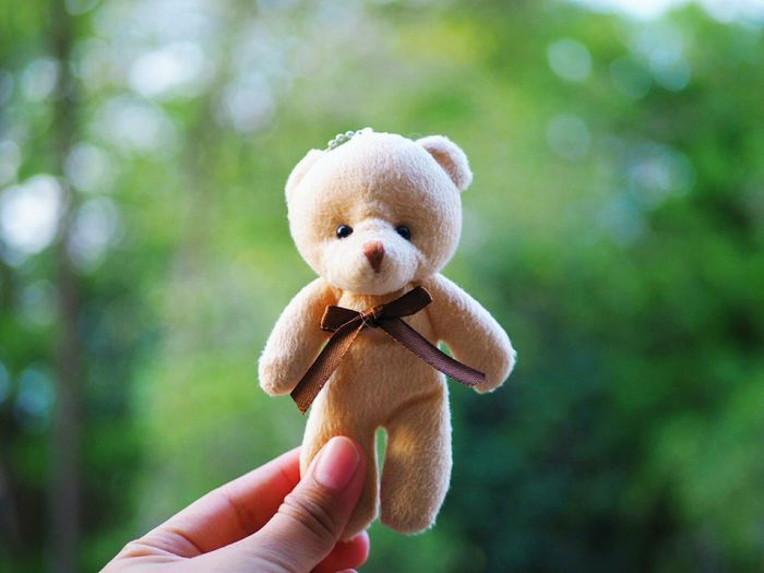 Close-up of hand holding toy