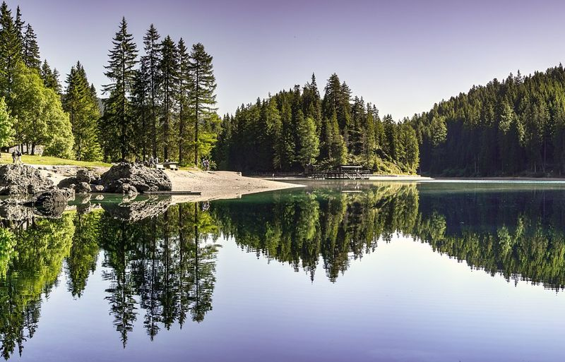 """There are always two people in every picture, the photographer and the viewer"""" Norway🇳🇴 Bergen Norway Norway Nature Tranquility Cold Tree Water Mountain Lake Reflection Pinaceae Forest Summer Sky Landscape Reflection Lake Salt Lake Pine Tree Calm Scenics Pine Cone Evergreen Tree"""