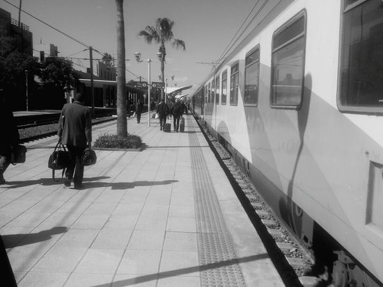 On The Way Train Train Station Palm Tree Dock Trip Suny Day Blue Sky Electric Train Black & White Xperia S