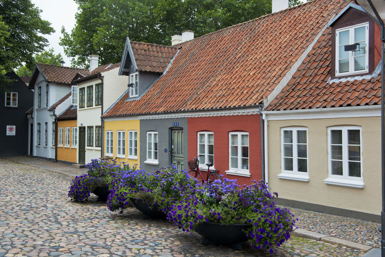 Odense Funen Denmark Danish Scandinavia Scandinavian Europe European  House Old Town Center Cobblestone Building Architecture Residential  Tourism Traditional Old Fahioned Scenic Urban Scenery TOWNSCAPE