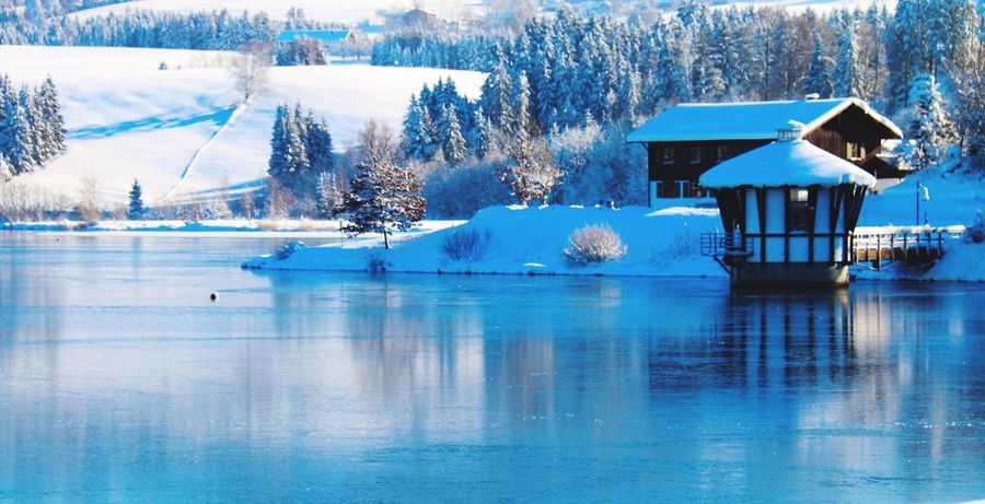 A winters tale ??? Deutschland Kempten (Allgäu) Snow Wintertime Beat-fighter Winter Landscape Allgäu